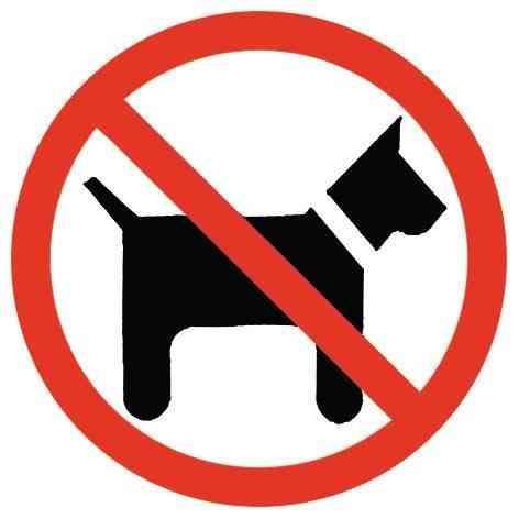Perro agresivo ataca a transeúntes  indefensos