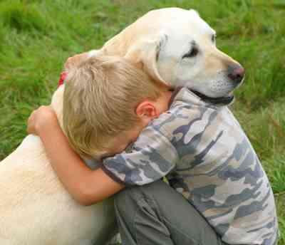 Los Mandamientos de un Perro