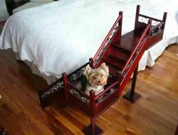 Mi perro se sube a la cama que hago mascotalia - Hacer camas para perros ...