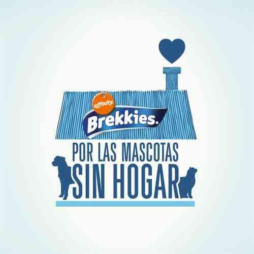 brekkies-protectora-animales