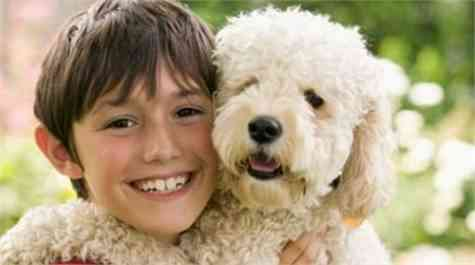 niños mascotas alergia