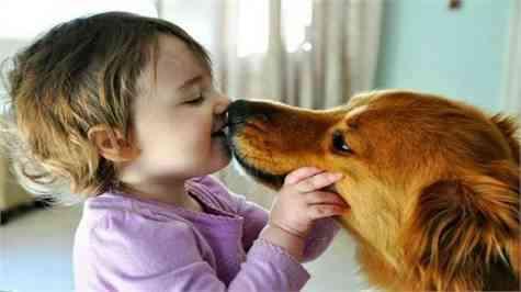 riesgos besos mascotas