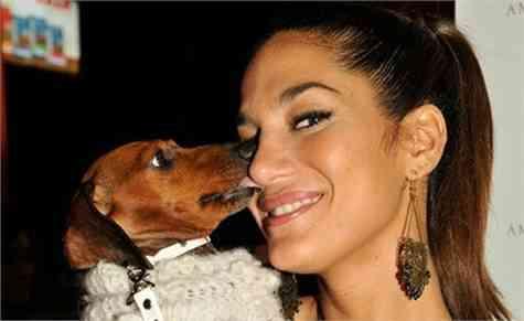 personas confesion mascotas