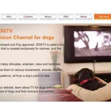 DogTV, la nueva inversión de Discovery