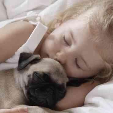 ¿Es aconsejable dormir con tu perro?