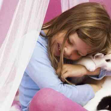 Valores que pueden aprender los niños de los gatos