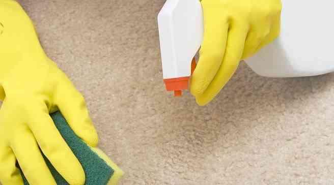 remedios caseros eliminar olor gatos