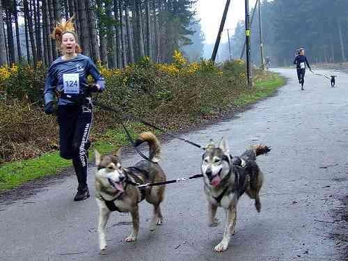 Correr con mi perro