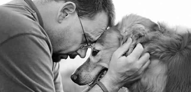 amar a un perro
