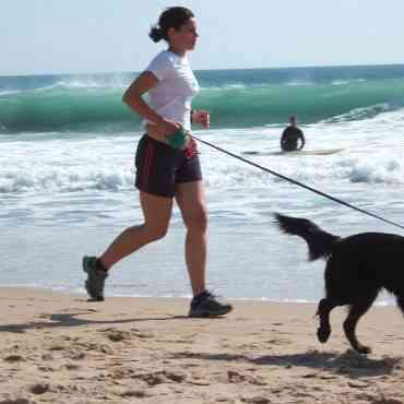 Razas de perros para corredores: las mejores tres opciones