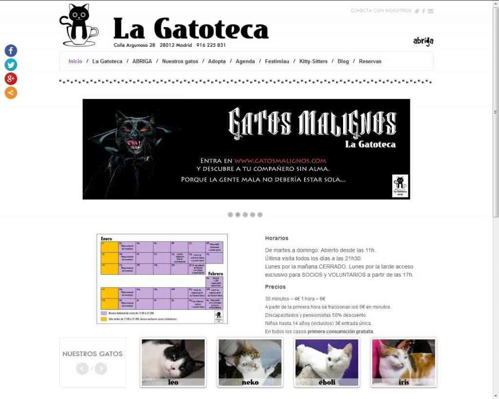 Los Cat Cafe