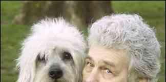 perros parecidos a sus dueños