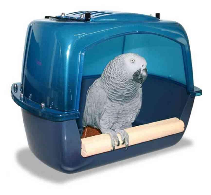accesorios para aves