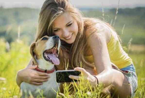 fotos al perro